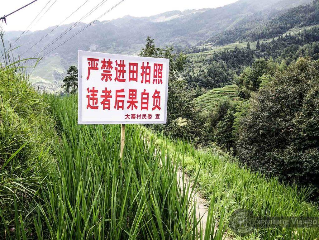 Ruta por los arrozales de Guilin