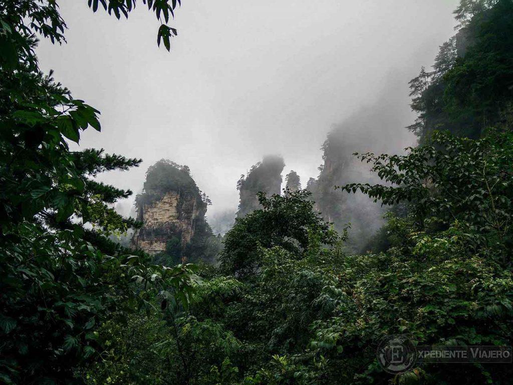 Trekking en la guía completa del Parque Nacional de Zhangjiajie