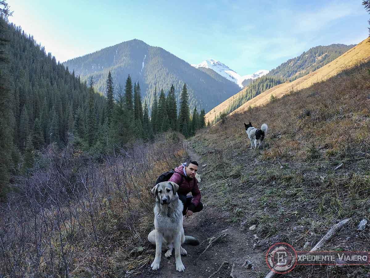 Perros en el trekking por Kolsai