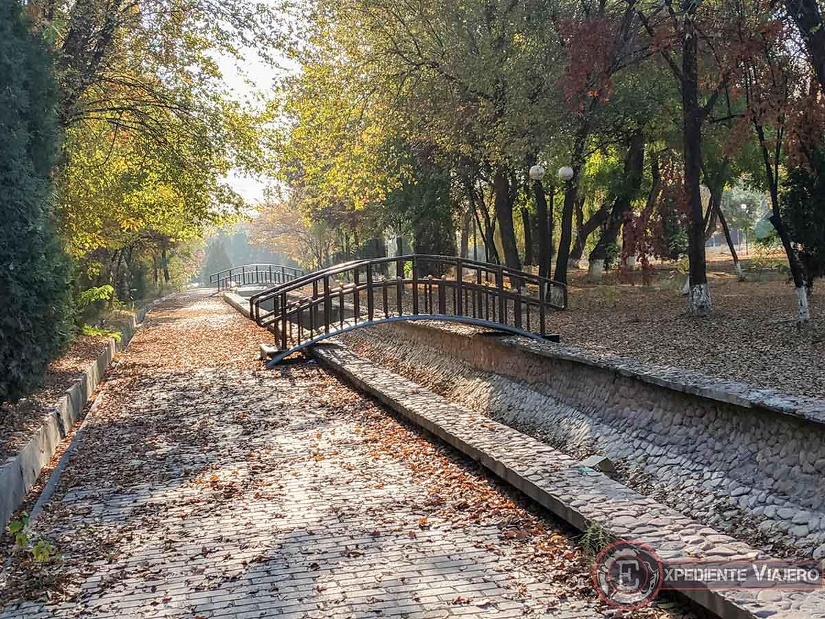 Colores otoñales en Tashkent