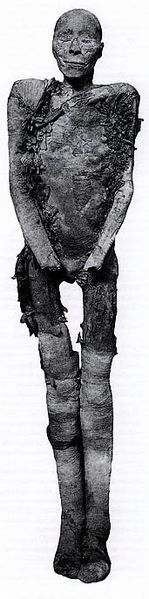 ¿La momia de Tutmosis I?
