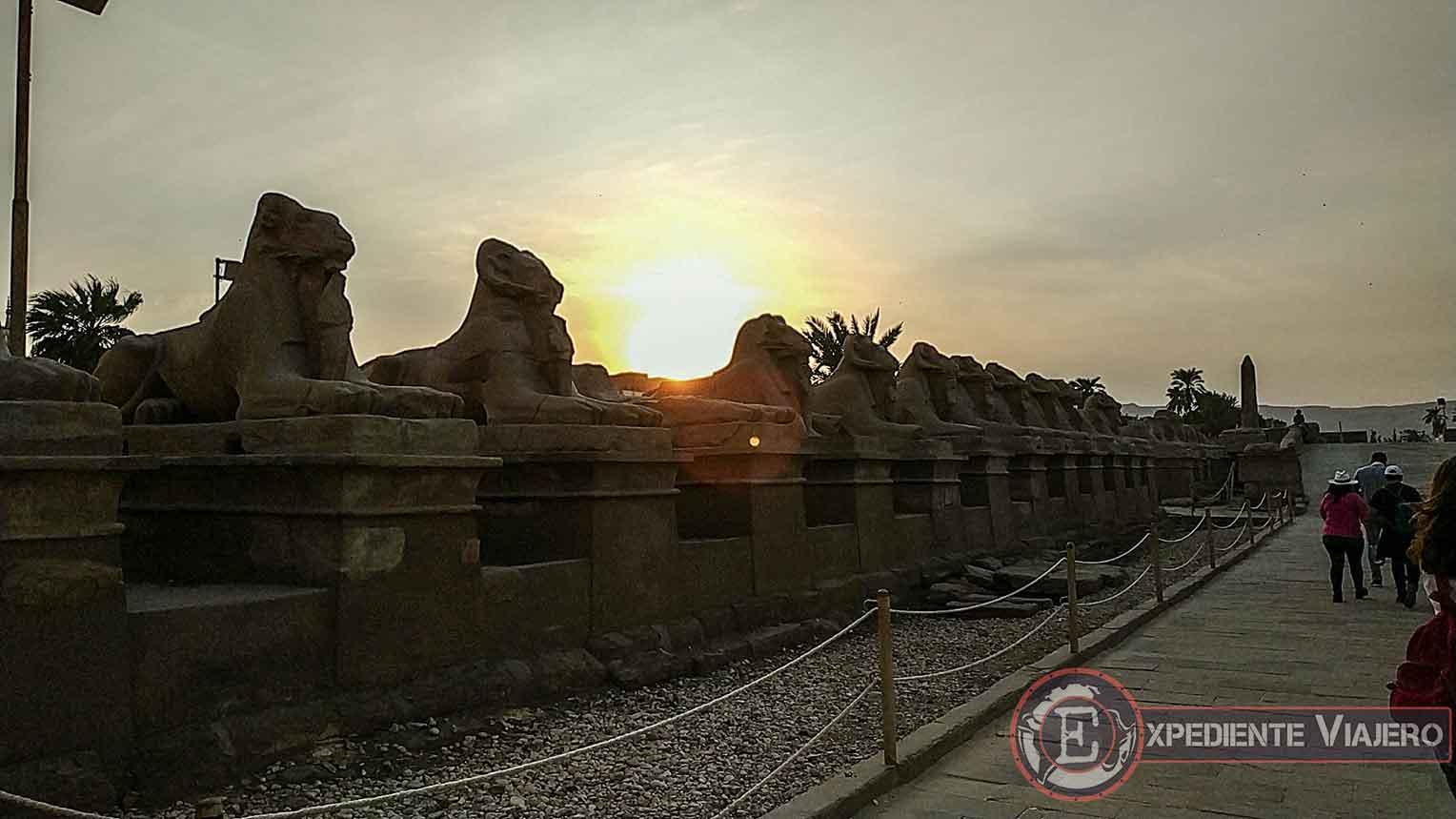 Atardecer tras las esfinges del templo de Karnak