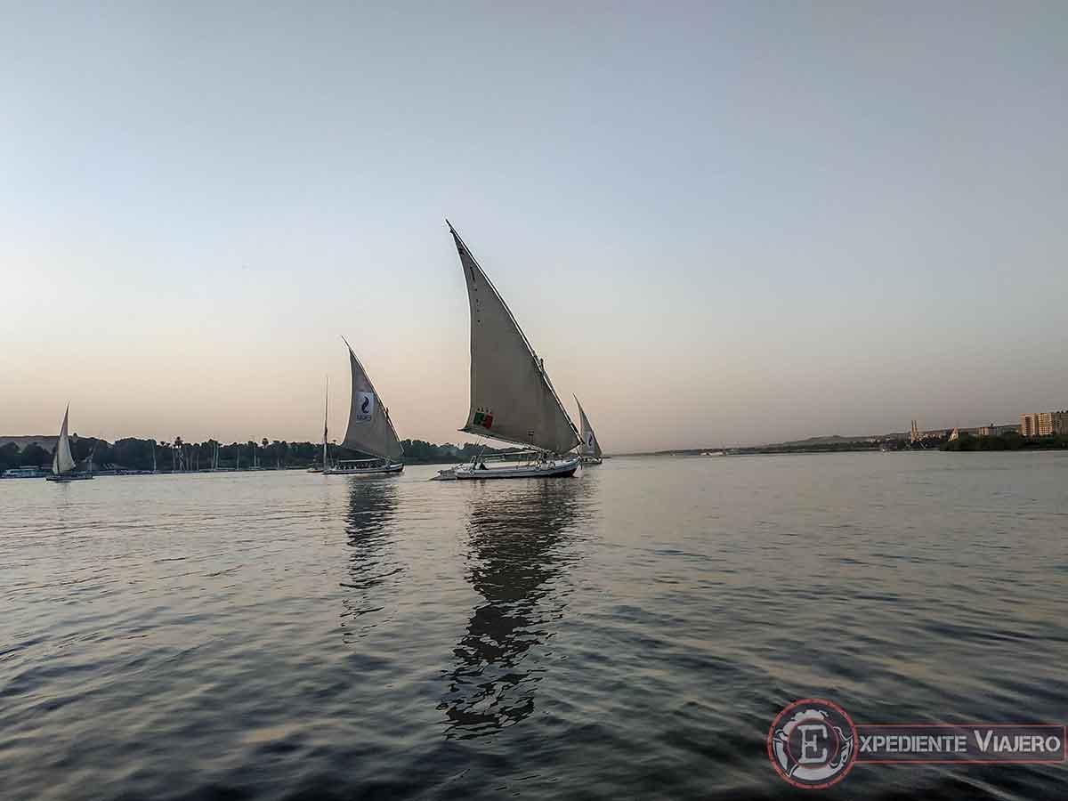 Paseo en Faluca (barco típico egipcio)