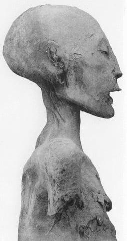 Momia de la madre de Tutankamón