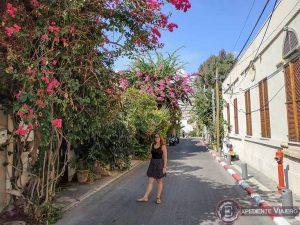 Calle con flores en el barrio de Neve Tzedek