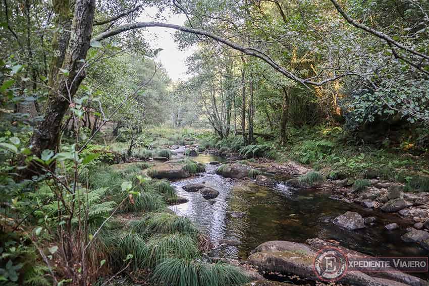 Entorno natural del río Tea cerca de la playa fluvial de Maceira