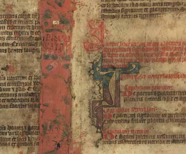 Historia del Toledo medieval: El libro mágico de Picatrix